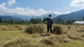 Agricoltore che lavora con i mucchi di paglia nell'azienda agricola aperta del campo, Artvin, Turchia immagine stock