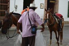 Agricoltore che lavora con i suoi cavalli a Santa Fe de Antioquia, Colombia Immagine Stock