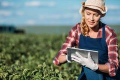 Agricoltore che lavora con la compressa digitale Fotografie Stock Libere da Diritti