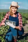Agricoltore che lavora con la compressa digitale Fotografia Stock Libera da Diritti