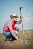 Agricoltore che lavora nel campo di grano Immagini Stock