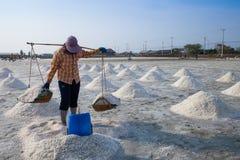 Agricoltore che lavora nel giacimento del sale Immagine Stock
