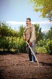 Agricoltore che lavora nel giardino per mezzo di un rastrello che livella il pl Fotografie Stock