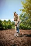 Agricoltore che lavora nel giardino per mezzo di una pala che scava t Immagini Stock