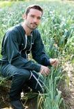 Agricoltore che lavora in un giacimento del porro Fotografia Stock Libera da Diritti