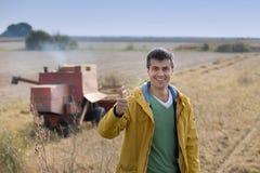 Agricoltore che mostra pollice su al raccolto della soia Immagine Stock Libera da Diritti
