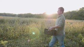 Agricoltore che porta la scatola con la patata dolce al campo video d archivio