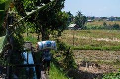 Agricoltore che porta un sacco di riso in Canggu Fotografia Stock
