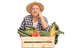 Agricoltore che posa dietro una cassa con le verdure Immagine Stock Libera da Diritti