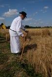Agricoltore che raccoglie grano con scyth Immagine Stock Libera da Diritti