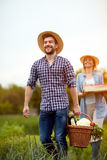 Agricoltore che ritorna dal giardino con i prodotti vegetariani immagine stock