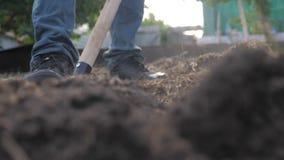 Agricoltore che scava la terra con un primo piano del giardino della pala video di movimento lento agricoltore dell'uomo che lavo video d archivio