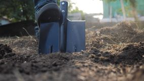 Agricoltore che scava la terra con un primo piano della vanga di giardino della pala video di movimento lento agricoltore dell'uo stock footage