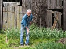 Agricoltore che scava nel giardino Fotografie Stock