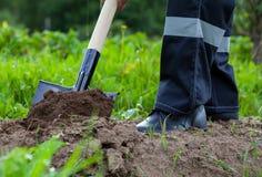 Agricoltore che scava un giardino Immagini Stock Libere da Diritti