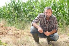 Agricoltore che si inginocchia dai raccolti Immagini Stock Libere da Diritti