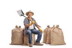 Agricoltore che si siede sul sacco della tela da imballaggio e che tiene una pala Immagine Stock