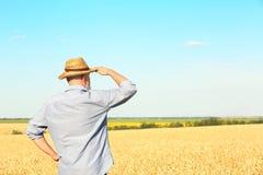 Agricoltore che sta nel campo Fotografia Stock Libera da Diritti