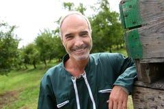 Agricoltore che sta nel mezzo del frutteto Immagini Stock Libere da Diritti