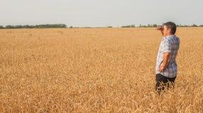 Agricoltore che sta in un giacimento di grano Fotografia Stock Libera da Diritti