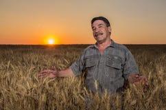 Agricoltore che sta in un giacimento di grano Immagini Stock