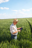 Agricoltore che sta in un giacimento di grano e che esamina compressa Fotografia Stock