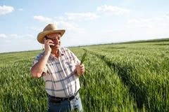 Agricoltore che sta in un giacimento di grano e che parla sul telefono Immagini Stock Libere da Diritti