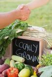 Agricoltore che stringe le mani al mercato Fotografia Stock