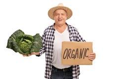 Agricoltore che tiene il cavolo organico Fotografia Stock