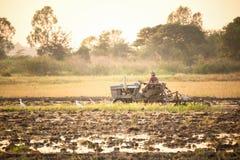 Agricoltore che utilizza il trattore dell'attrezzo nel campo al tramonto Immagini Stock Libere da Diritti
