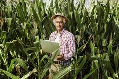 Agricoltore che utilizza un computer portatile nel campo Immagini Stock