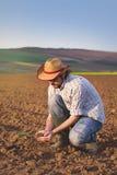 Agricoltore Checking Soil Quality della terra agricola fertile dell'azienda agricola Fotografia Stock