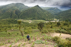 Agricoltore in Chin State, Myanmar Fotografia Stock Libera da Diritti
