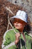 Agricoltore cinese Fotografie Stock