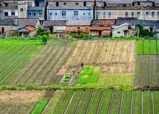 Agricoltore cinese che lavora in un campo nella campagna cinese Fotografie Stock