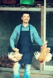 Agricoltore con due polli in mani sull'azienda agricola Immagine Stock