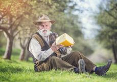 Agricoltore con formaggio Fotografia Stock