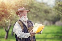 Agricoltore con formaggio Immagini Stock Libere da Diritti