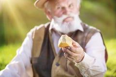 Agricoltore con formaggio Immagine Stock Libera da Diritti