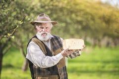Agricoltore con formaggio Immagine Stock