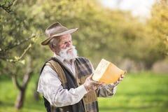 Agricoltore con formaggio Fotografie Stock Libere da Diritti