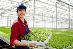 Agricoltore con i raccolti Immagini Stock Libere da Diritti