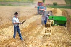 Agricoltore con il computer portatile nel campo durante il raccolto Immagini Stock