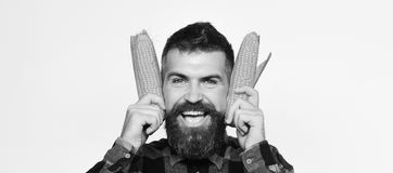 Agricoltore con il fronte felice con cereale giallo vicino alle orecchie Fotografie Stock Libere da Diritti