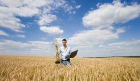 Agricoltore con il mazzo del grano e del computer portatile Immagini Stock Libere da Diritti