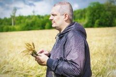 Agricoltore con il PC della compressa vicino al giacimento di cereale giallo Immagini Stock
