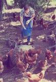 Agricoltore con il secchio sull'azienda avicola Fotografia Stock