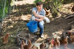 Agricoltore con il secchio sull'azienda avicola Fotografia Stock Libera da Diritti