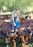 Agricoltore con il secchio sull'azienda avicola Fotografie Stock Libere da Diritti