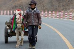 Agricoltore con il suo bello cavallo bianco Fotografie Stock Libere da Diritti